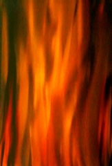 firelight_background_image_homepage